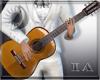 (IA) Guitar + Poses