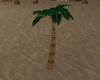 *p Palm Tree