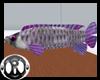 [ML]Purple Fish