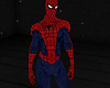 SPIDER MAN - Full Outfit