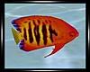 -S-Atlantica Fish 4