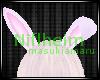 `e Bunny Ears