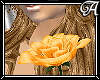 !A! Yellow Rose