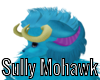 Sully Mohawk Hair :3