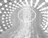 PlatinumDreams PhotoRoom