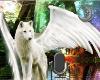 AngelWolf VoiceBox