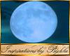 I~Bayou Moon & Stars