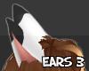 S  Aze Ears 3