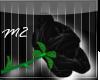 Black Rose ·M2·