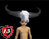 #13 Skull Helmets