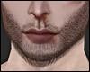 Perfect Beard Brown MH