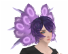Purple Head Feathers
