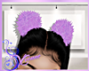 Y* Purple Pompom