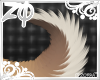 Identity   Tail