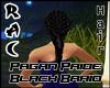 Pagan Pride Black Braid