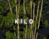 """ Attic Bamboo"