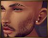 Perfect Mesh Ears