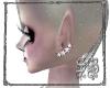 SB Star Earrings