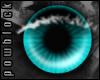 POW Turquoise Eyes