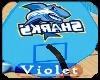 (V) Sharks Gym