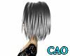 CAO Charcoal MIA