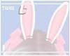 T! Bunny Ears - Pinku