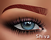 S. Olia Brows Red