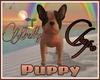 |MV| Puppy