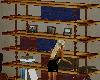 [SD] Office Shelves