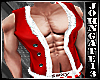 Sexy Santa Muscle Vest