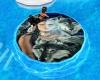 (LW)wolf water trampolin