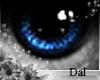 `Ⓓ`Doll Eyes 3