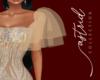 A I Bianx Dress sleeves