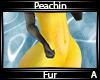Peachin Fur A