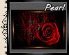 [P] Red Rose