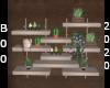 secert garden wall plant