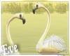 c White Flamingos