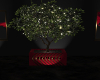 ~DES~Christmas Plant 2