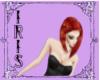 ginger iris