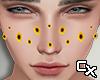 Sunflower Blush M