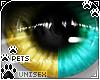 [Pets] Zorro | eyes 2-T