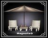 ~MG~Vintage Beach Chairs