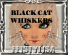 ! Black Cat Whiskers