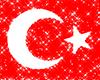 Turkishflag -Turk Bayrak