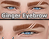 Eyebrow Ginger Lines