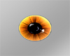 SunBurnt  Eyes