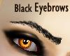 Detailed Black Eyebrows