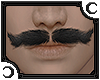 [Pablo] Mustache