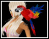 Pet Macaw Red