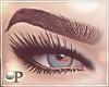 Lida Eyeliner & Lashes